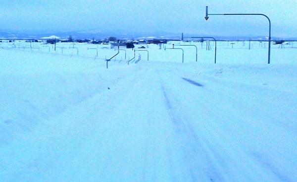 17雪原.JPG